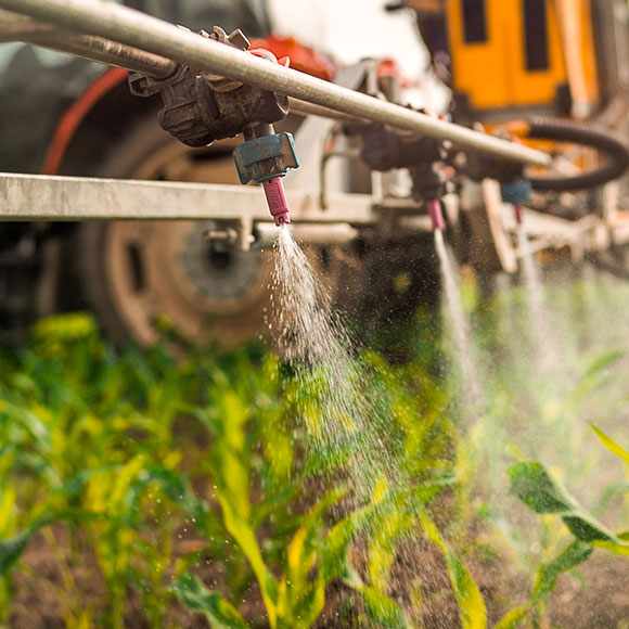 Watering crops - Agrisure, Farm & Agricultural Insurance